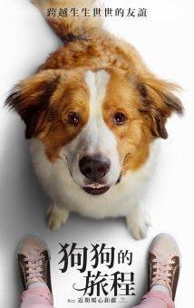 狗狗的旅程劇照