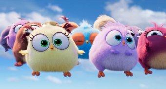 憤怒鳥玩電影2:冰的啦劇照
