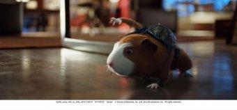 鼠膽妙算劇照