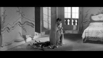 「記憶的迷宮——經典.雷奈」回顧展劇照