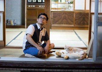 貓咪收集之家劇照