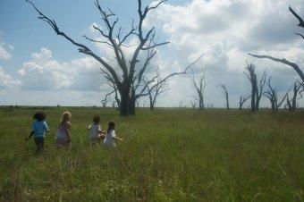 南方野獸樂園劇照