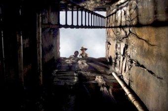 神鬼驚奇:古生物復活劇照
