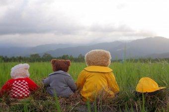 熊熊愛上你劇照