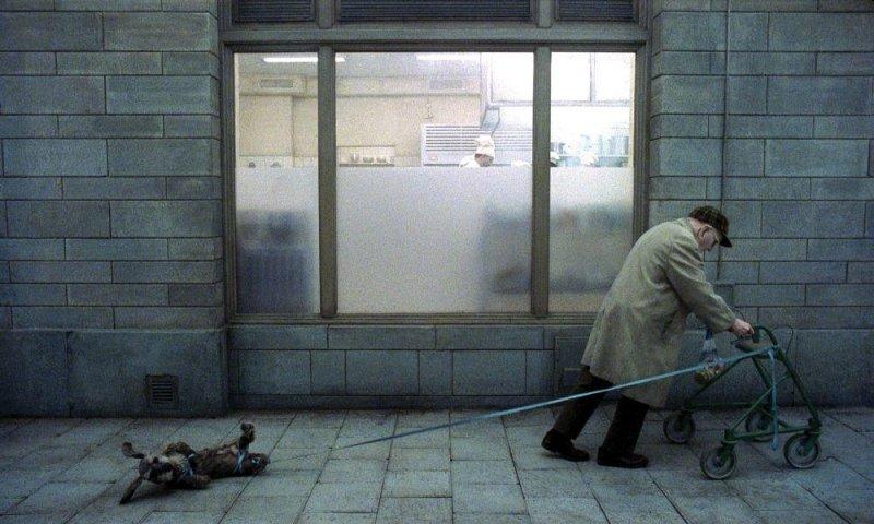 瑞典電影大師 洛伊安德森人生三部曲劇照