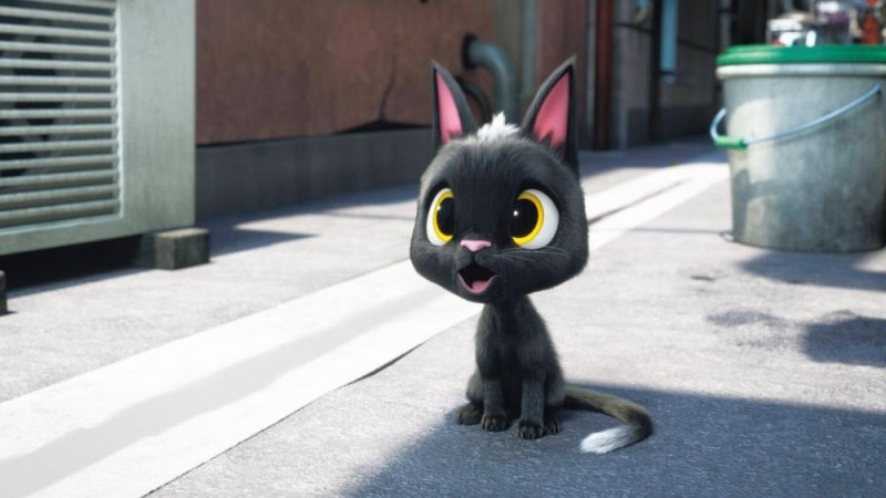 黑貓魯道夫劇照