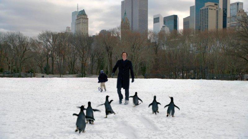 波普先生的企鵝劇照